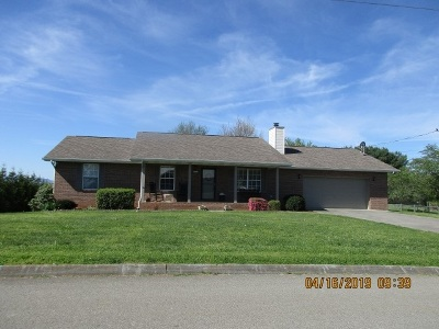 Sevier County Single Family Home For Sale: 1429 Kay View Dr