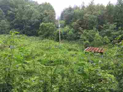 Residential Lots & Land For Sale: Green Corner