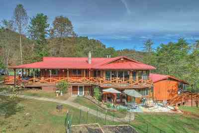 Hawkins County Single Family Home For Sale: 141 Dalson Rd