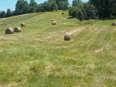 Grainger County Residential Lots & Land For Sale: Lot 4 Brown Road