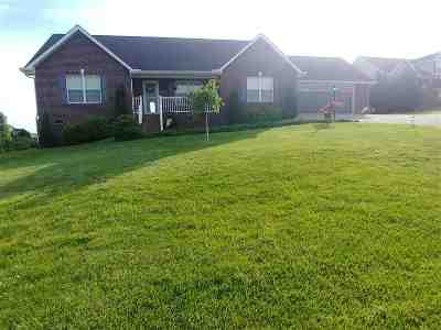 Sevierville Single Family Home For Sale: 1335 Hodges Bend Rd