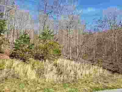 Residential Lots & Land For Sale: Lot 576 Whistle Valley Rd