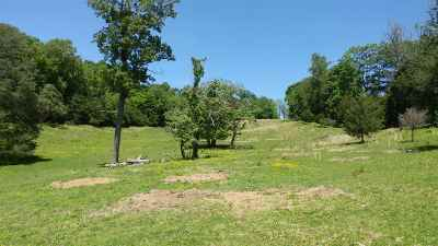 Grainger County Residential Lots & Land For Sale: Indian Ridge Road