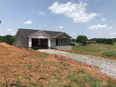 Sevierville Single Family Home For Sale: 1449 Flatwood Road
