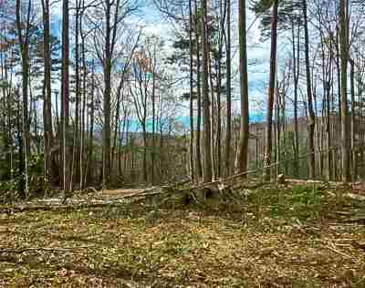 Cocke County Residential Lots & Land For Sale: 2825 Tennessee Way