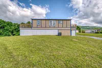 Greene County Single Family Home For Sale: 255 Johnson Hollow Lane