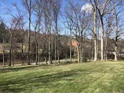 Residential Lots & Land For Sale: 65 Sunnyview Road