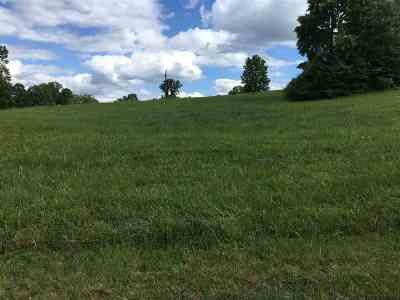 Rutledge Residential Lots & Land Auction: Woodstock Drive Lot 205