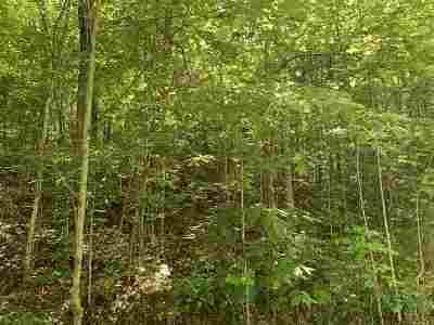 Dandridge Residential Lots & Land For Sale: Hurleyway