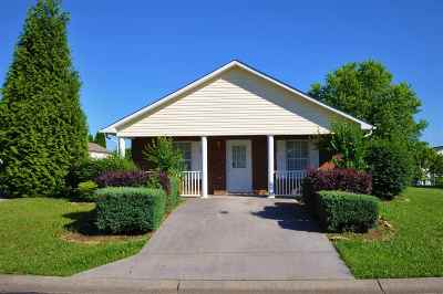 Sevierville Single Family Home For Sale: 1239 Santa Anita Way
