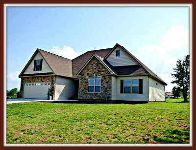 Dandridge Single Family Home For Sale: 517 Mountain Vista Trail