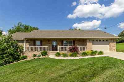 Hamblen County Single Family Home For Sale: 6231 Talley Chapel Pike