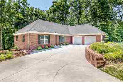 Russellville Single Family Home For Sale: 1965 Turners Landing Rd