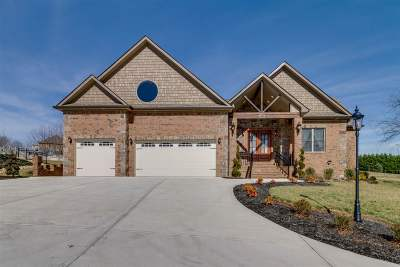 Sevier County Single Family Home For Sale: 2399 McCleary Rd