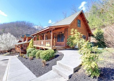 Sevierville Single Family Home For Sale: 3143 Smokey Ridge Way
