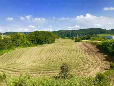Residential Lots & Land For Sale: Hwy. 321