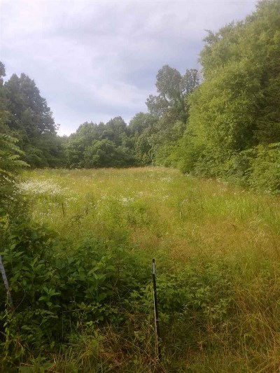 Sevier County Residential Lots & Land For Sale: Thorn Grove Pike