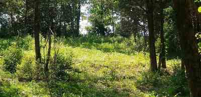 Hamblen County Residential Lots & Land For Sale: Howerton Dr Lot 3