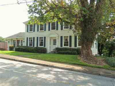 Single Family Home For Sale: 208 S Irish