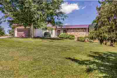 Grainger County Single Family Home For Sale: 2240 County Line Rd