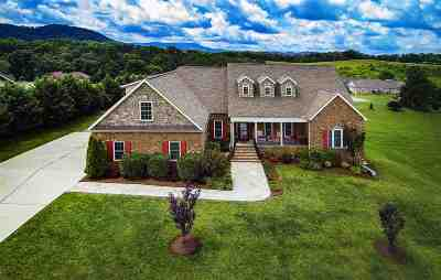 Sevierville Single Family Home For Sale: 1526 Laurel Falls Ln