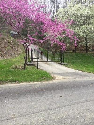 Sevier County Residential Lots & Land For Sale: 526 Spicer Lane