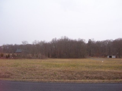 White Pine Residential Lots & Land For Sale: Lot 12 Devon Way