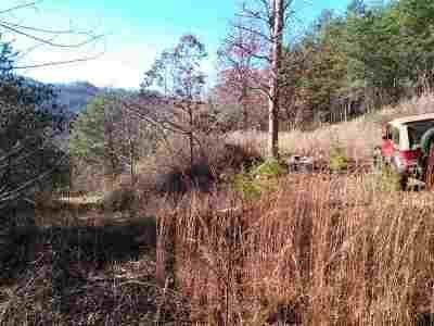 Grainger County Residential Lots & Land For Sale: 1334 Steve Brown Rd