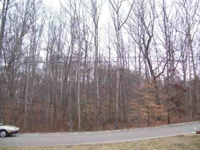 White Pine Residential Lots & Land For Sale: Lot 16 Devon Way Road