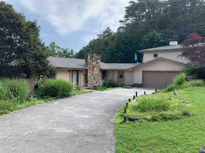 Hamblen County, Hawkins County, Grainger County Single Family Home For Sale: 7350 Evolene Cir