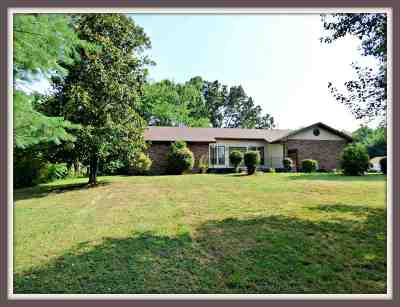 Sevierville Single Family Home For Sale: 821 Catlett Rd.