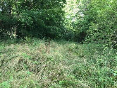 Cocke County Residential Lots & Land For Sale: Bear Creek Rd