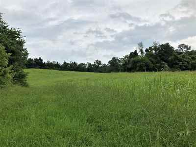 Cocke County Residential Lots & Land For Sale: 236 Loop Rd