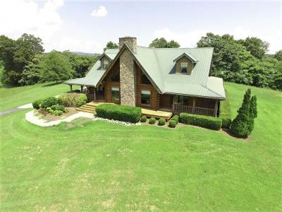 Bean Station, Thorn Hill, Rutledge, Washburn, Blaine Single Family Home For Sale: 1743 Holston River Dr