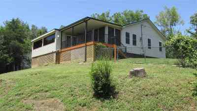 Sevierville Single Family Home For Sale: 1209 Clabo Ln