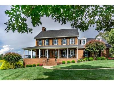 Single Family Home For Sale: 225 Chimney Top Lane