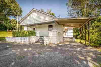 Hamblen County Single Family Home For Sale: 196 Cole Rd