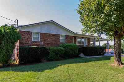 Hamblen County Single Family Home For Sale: 1765 Jaybird Road