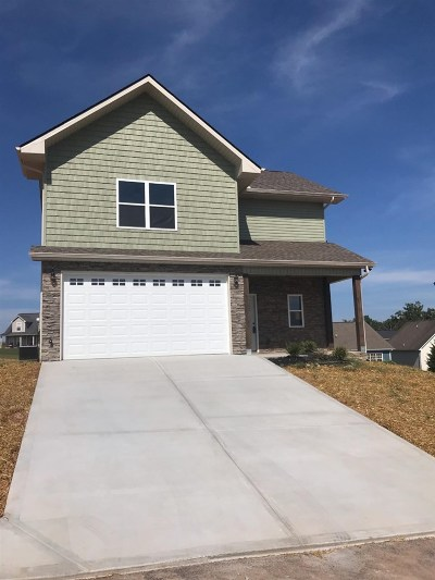 Sevierville Single Family Home For Sale: 2223 Frewin Court