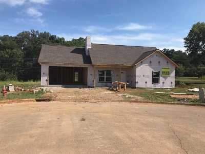 Sevierville Single Family Home For Sale: 2248 Frewin Court