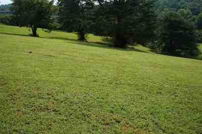 Grainger County Residential Lots & Land For Sale: Newman Hollow