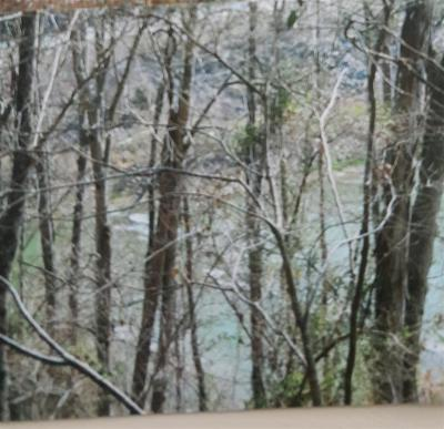 New Tazewell TN Residential Lots & Land For Sale: $5,000