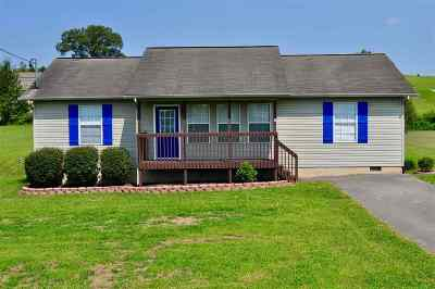 Sevier County Single Family Home For Sale: 750 N Country Ln