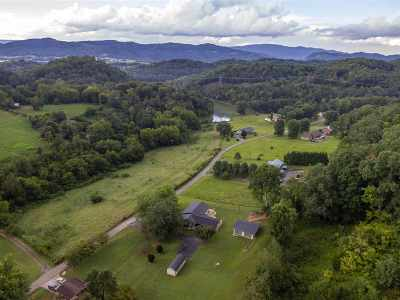 Russellville Single Family Home For Sale: 2120 Anderson Bend Road