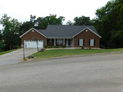 Hamblen County, Hawkins County, Grainger County Single Family Home For Sale: 2369 Boat Dock Road