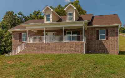 Single Family Home For Sale: 169 Scenic View Drive