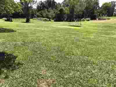 Russellville Residential Lots & Land For Sale: 5552 Thompsie Dr.