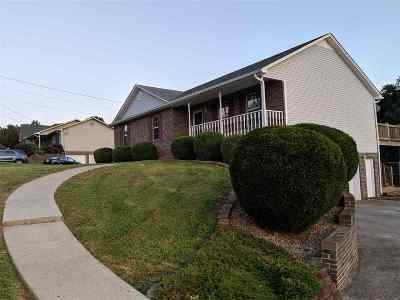 Russellville Single Family Home For Sale: 975 Beth Drive