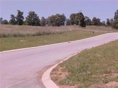 Grainger County Residential Lots & Land For Sale: Lot 49 Chippewa Lane