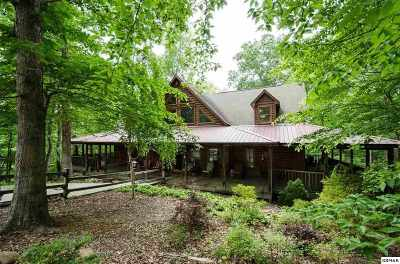 Sevierville Single Family Home For Sale: 4020 Oak Haven Ct